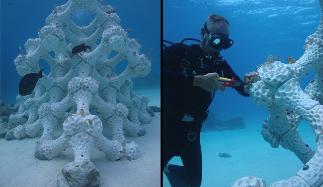 Man snorkeling in the ocean next to 3d printed coral reef